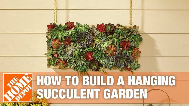 How to Build a Vertical Hanging Succulent Garden