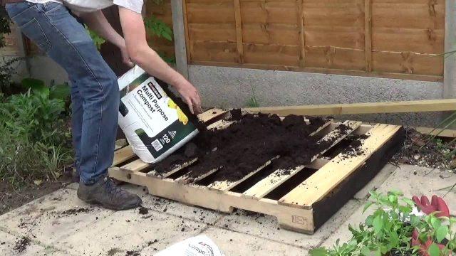 Wooden Pallet Planting
