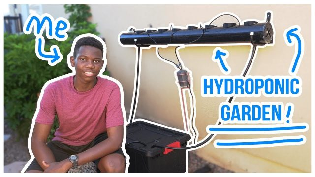 Making A Hydroponic Garden In My Backyard – Scrap Science #3