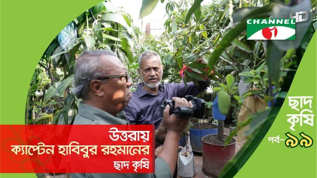Rooftop farming | EPISODE 99 | HD | Shykh Seraj | Channel i | Roof Gardening | ছাদকৃষি |