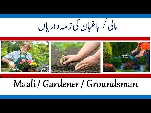 professional gardener Job Description| Mali Job Role and Responsibilities