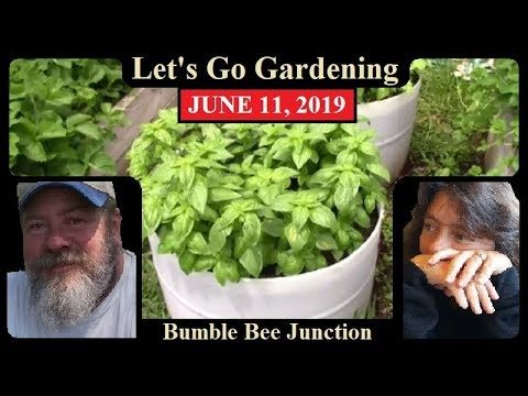 Full Raised Bed Garden Tour | Home Vegetable Gardening Tips And Ideas