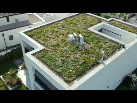 ArchiGreen® extensive green roof projects