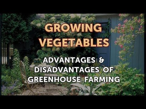 Advantages & Disadvantages of Greenhouse Farming