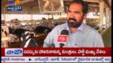 Advanced Milk Dairy established in Kattangur of Nalgonda – జైకిసాన్ – on 23rd January 2015
