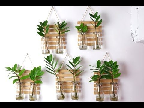 ZZ Plant / Zanzibar Gem Clear Glass Vase Wall Hanging Planters and Decor for Indoor