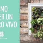Como Hacer Un Cuadro De Plantas SUCULENTAS//Jardín Vertical//manos de tierra