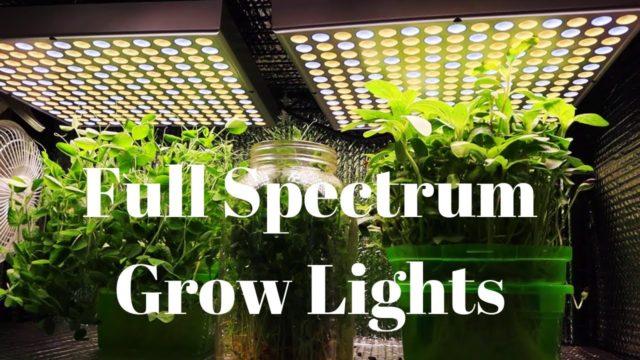 Grow Lights for Indoor Farming / DIY Hydroponics
