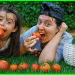 Özlem and Rüya Picking Up Tomato From The Garden – Funny Kids Video