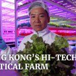 Inside Hong Kong's hi-tech vertical farm of the future
