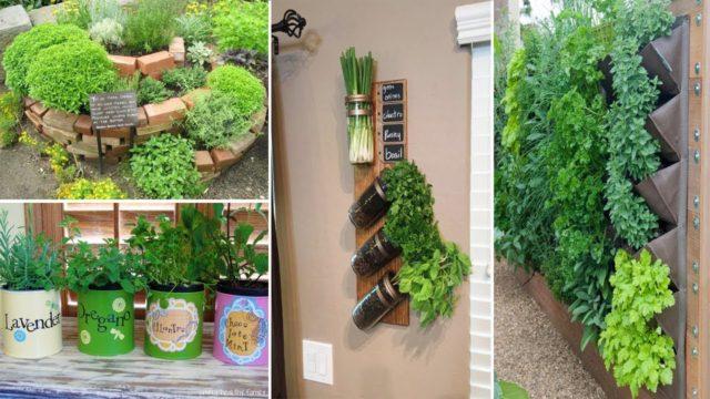 100 Herb Garden Ideas To Spice Up Your Life | DIY Garden