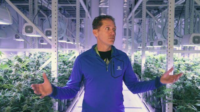 Montel vertical farming solution