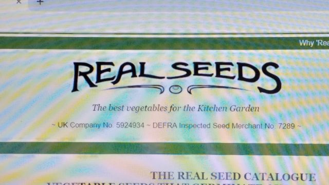 Real Seeds website. The real seeds catalogue. BRILLIANT!!