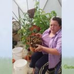 Tower Tip: Emptying the Compost Tube