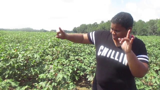 The Black Farmers In America –  A Black Female Farm History & Story  How we got paid 2