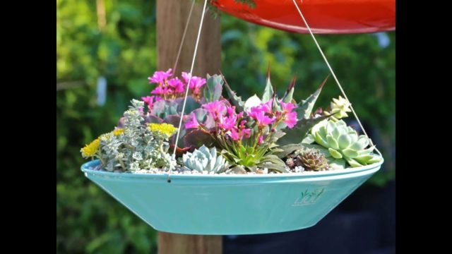 45 Best Outdoor Hanging Planter Ideas