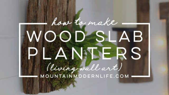 How to Make Wood Mounted Planters (Living Wall Art) for ferns, hoyas, and other epiphytes!