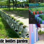 Brilliant ways to reuse plastic bottles garden
