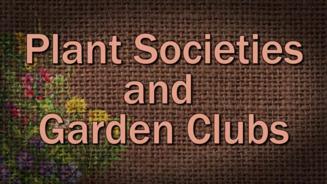 Plant Societies and Garden Clubs – Family Plot