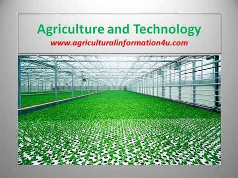 Advantages and Disadvantages of Greenhouse Technology