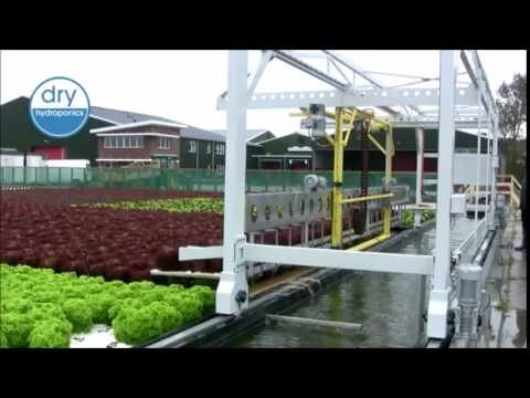 Dry Hydroponics System from A.M.A.