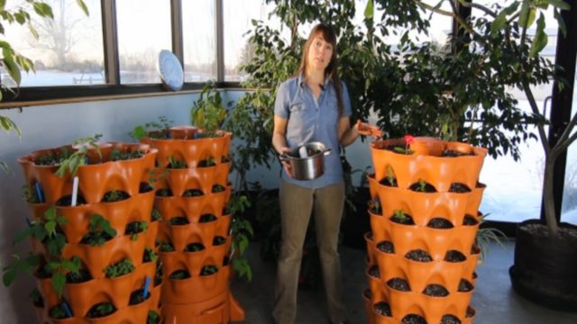 How to Use the Garden Tower for Composting