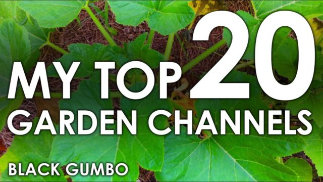 My Top 20 Youtube Garden Channels (and a brief tour) || Black Gumbo