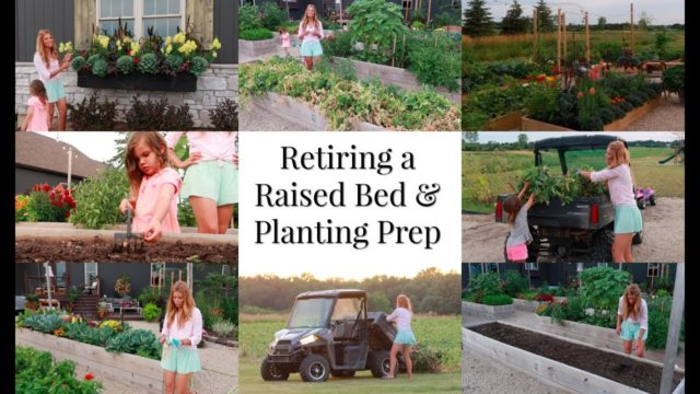 Retiring a Raised Bed, Prepping For Planting Again, Vegetable Gardening Tips, just life 3-20