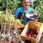 July Vegetable Garden Harvest: Local Food at Its Best! (2019)