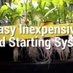 How to make a hydroponic seed starting system cheap and easy