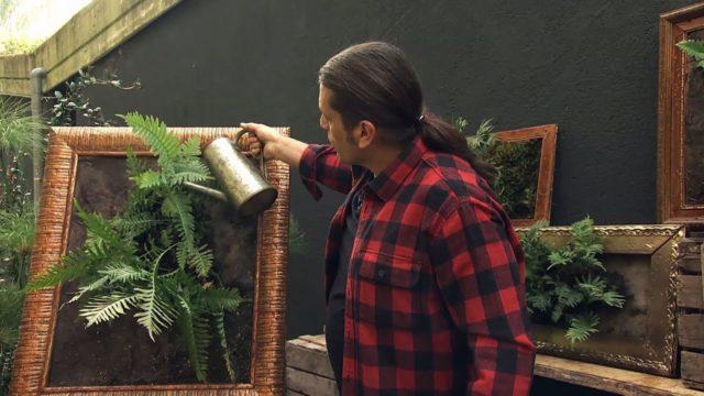 Jardín vertical autónomo con helecho Polypodium – Decogarden – Jardinatis