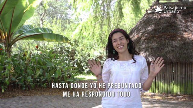 Curso de jardines Verticales en Ecuador