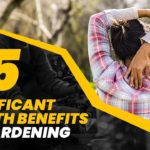 5 Significant Health Benefits Of Gardening – Great Life Hacks Through Gardening