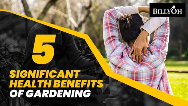5 Significant Health Benefits Of Gardening – Great Life Hacks Through Gardening