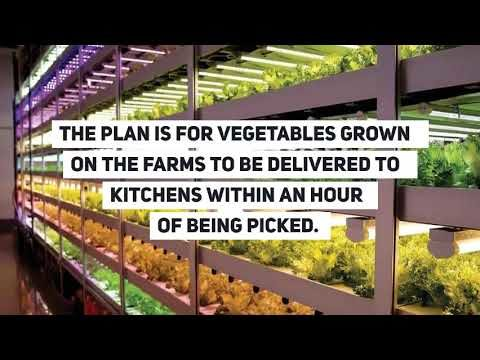 "Ocado has invested £17m in developing so-called ""vertical"" farms."