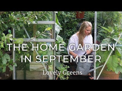 The Home Garden in September