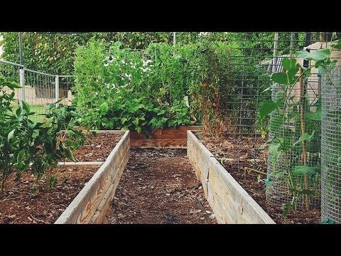 Our secret to a successful Desert Garden {with little work}