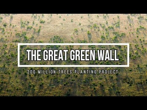 The Great Green Wall – 200 Million Trees Planting Project Across Africa