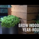 Grow Indoors Year-Round with the Black Magic© Hydroponic System of Products