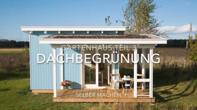 Gartenhaus selber bauen: Dach mit Dachbegrünung