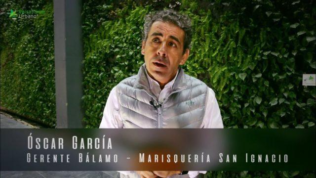 MASECOR JARDINERIA Y PAISAJIISMO