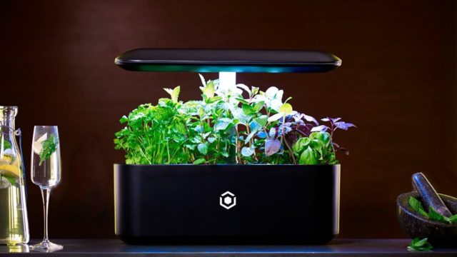 Top 5 Indoor garden technology | hydroponic system