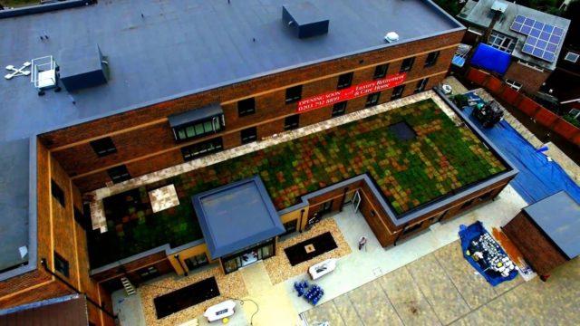 Wallbarn M Tray Modular Green Roofing System