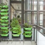 Juwel Blumenkasten / Balkonkasten VERTICAL GARDEN limette/safran