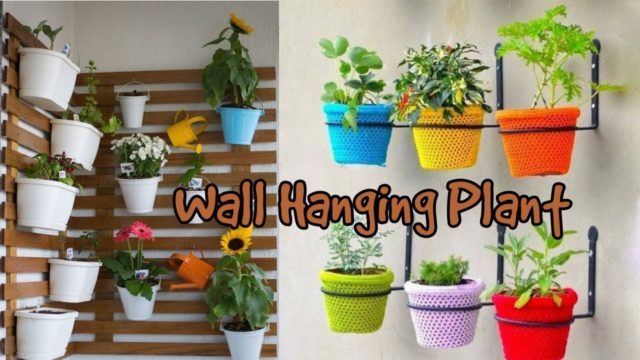Wall Hanging Plants Design Ideas For your Home Decoration
