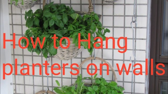 How to hang planters on wall // How to make vertical Garden