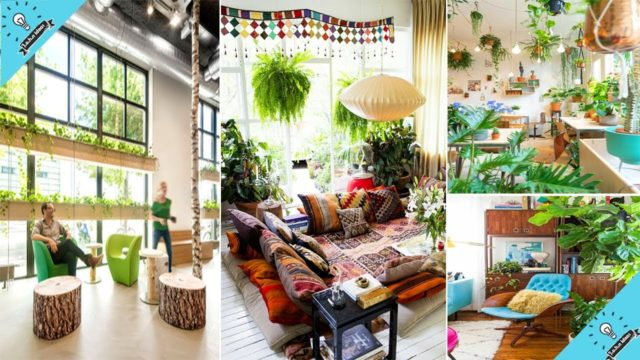 Indoor Gardening Ideas to Beautify Your Space   Garden Ideas