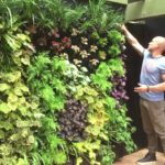 Vicinity Greenwall Systems from Addicted to Gardens