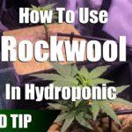 Using Rockwool As A Hydroponic Grow Medium