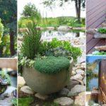 70 Indoor And Outdoor Succulent Garden Ideas | Garden Ideas